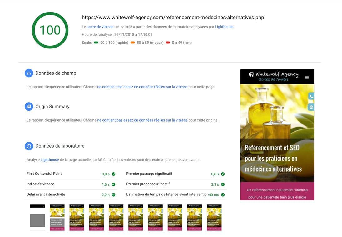 référencement naturel médecines naturelles et rapidité site web