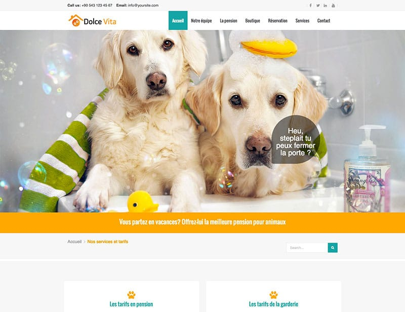 site internet animaux services pension pour animaux : chien chat lapin nac